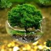 Valutazione dell'impatto ambientale di determinati progetti pubblici e privati